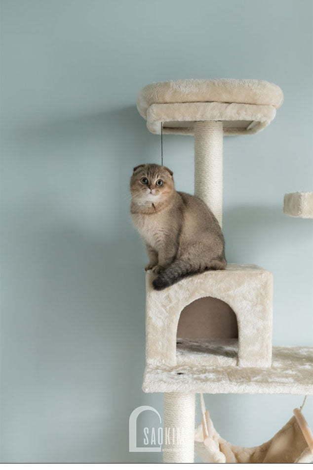 Góc nhỏ xinh dành cho bé mèo cưng của gia chủ